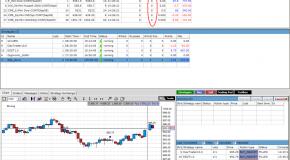 Die Handelsplattform Strategy Runner pro & StrategyXchange
